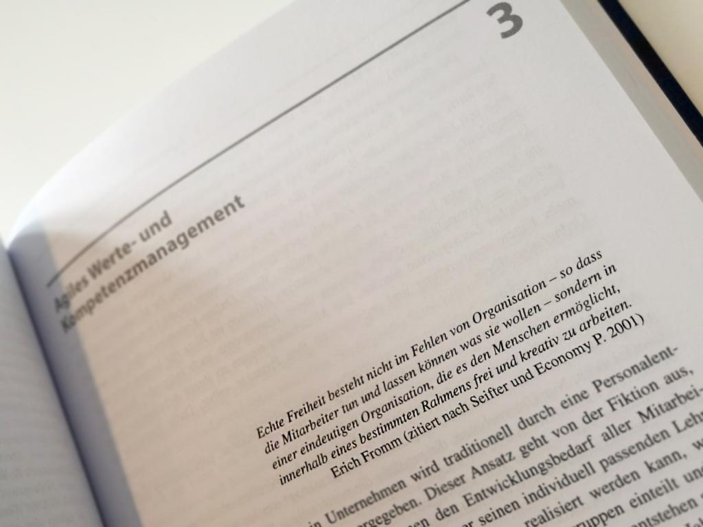 Textauszug - Buch: Agile Werte- und Kompetenzentwicklung