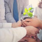 Achtsamkeit und Sinnorientierung: Modelle und Methoden für Unternehmen